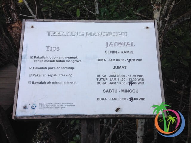 jadwal buka tracking mangrove karimunjawa
