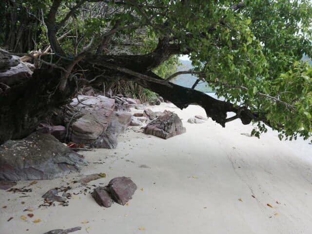 Pantai Bobi Karimunjawa (21)